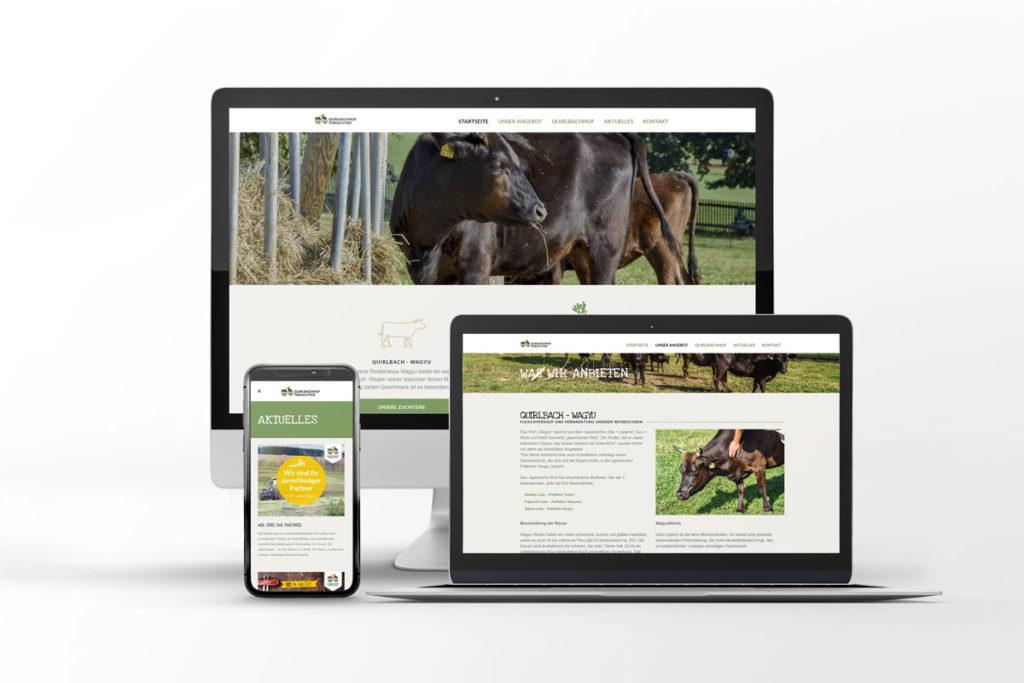 Webseite Quirlbachhof Stier
